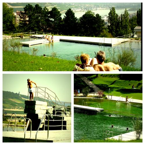 Naturbad Bingerbrück