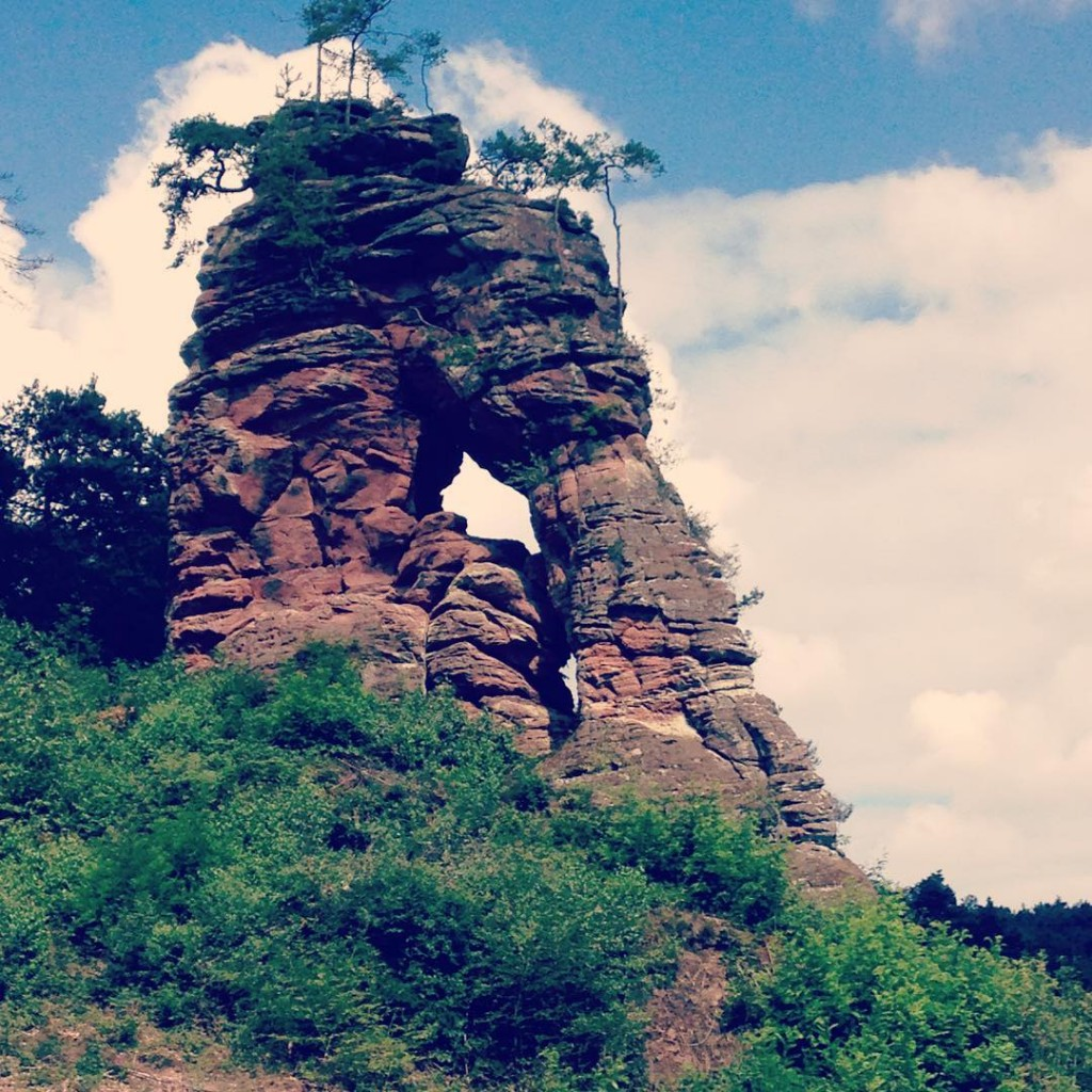 Felsenland Wanderweg bei Dahn berall versteinerte Riesen Mrchenhaft